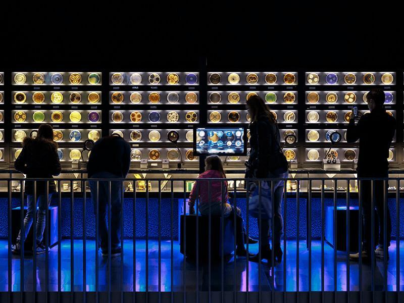 Koningin Máxima opent wereldprimeur Micropia