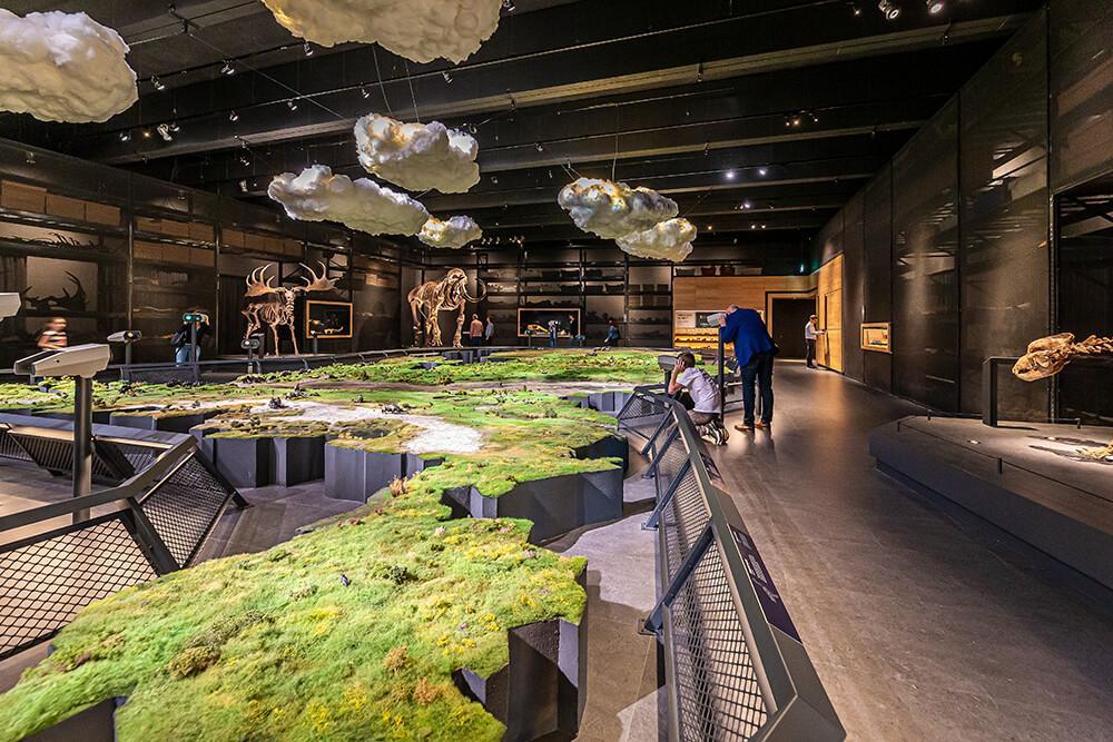 Naturalis - Biodiversity Center