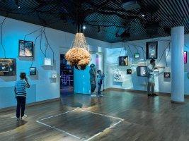 Museum voor Communicatie